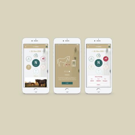 ui-horse-app